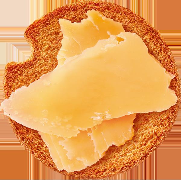 Beschuit met kaas